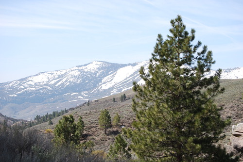 Hike_up_peavine_42808_005